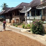 Pemkab Rejang Lebong Siapkan Tanah Obyek Reforma Agraria
