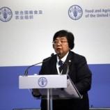 Kehutanan Indonesia Dukung Capaian SDGs