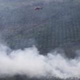 11 Helikopter Atasi Kebakaran Hutan