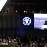 Hutan dan Masa Depan Agenda 2030