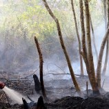Sistem Pemeringkatan Bahaya Kebakaran Lahan Gambut Dikembangkan