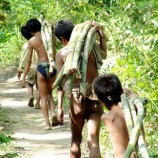Demi Orang Rimba, Taman Nasional Diubah