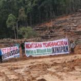 Daerah Belum Pahami Proses Hutan Adat