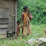 Sinergi Pemerintah Diperlukan dalam Penetapan Hutan Adat