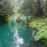 Pengelolaan Hutan Rendah Emisi Dimulai