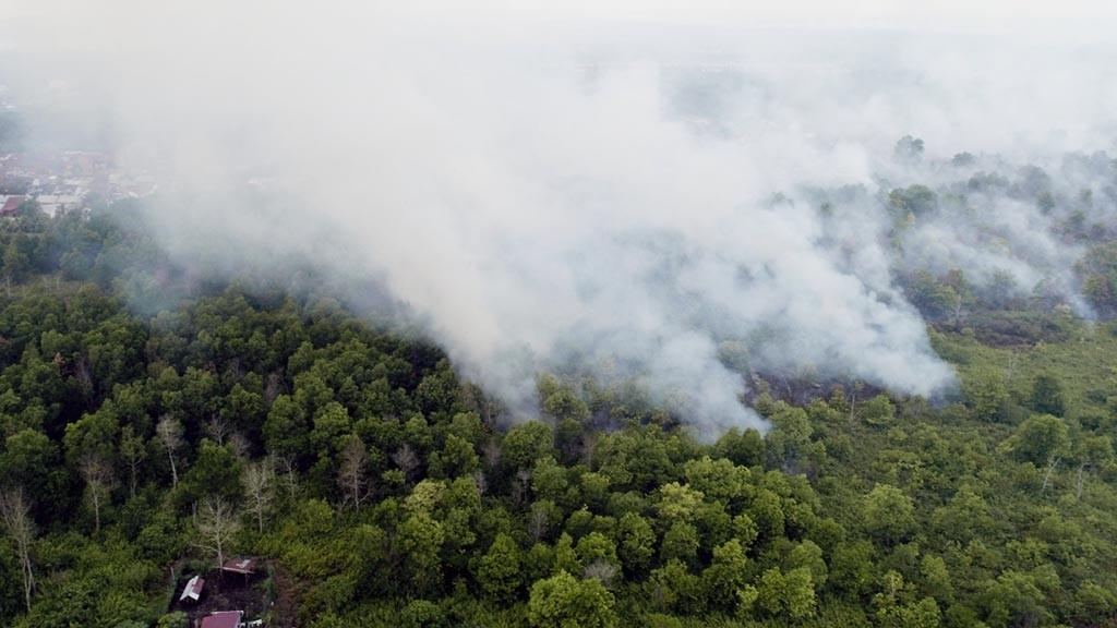 Kebakaran lahan gambut yang terjadi di Sungai Raya Dalam, Kabupaten Kubu Raya, Kalimantan Barat, Senin (25/3/2019). Foto diambil dengan drone. KOMPAS/EMANUEL EDI SAPUTRA (ESA) 25-03-2019