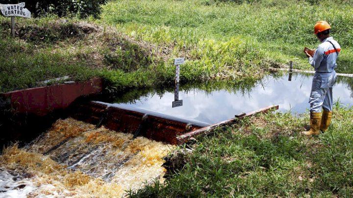 Karyawan PT Mayangkara Tanaman Industri, Senin (18/3/2019), memeriksa saluran air pada kanal konsesi perusahaan hutan tanaman industri di Kalimantan Barat. Memastikan lahan gambut tetap basah merupakan kewajiban perusahaan untuk menjaga arealnya tidak rentan kebakaran hutan dan lahan. KOMPAS/ICHWAN SUSANTO (ICH) 18-03-2019