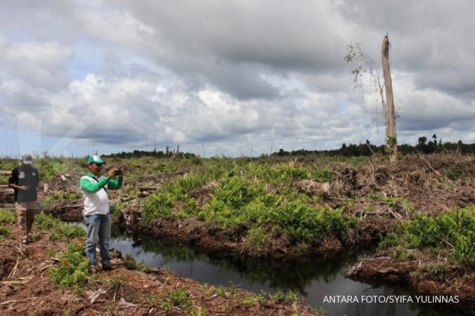 Sejumlah petugas gabungan Badan Kesatuan Pengelola Hutan (BKPH), Polisi Hutan (Polhut) dan Yayasan Ekosistem Lestari (YEL) meninjau pembukaan lahan baru di kawasan lindung gambut Rawa Tripai, Alue Bilie, Nagan Raya, Aceh, Rabu (12/12/2018). Berdasarkan data Kepala Badan Kesatuan Pengelola Hutan (BKPH) wilayah Alue Bilie Etiska Alian Saputra, dari 1.605 hektar luas kawasan lindung gambut Rawa Tripa wilayah Alue Bilie hanya tersisa sekitar 1.375 hektar, selebihnya sudah dirambah untuk pembukaan lahan perkebunan sehingga berdampak pada kehidupan satwa liar, terutama orangutan sumatra. ANTARA FOTO/Syifa Yulinnas/kye.