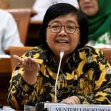 Moratorium Hutan Diusulkan Permanen