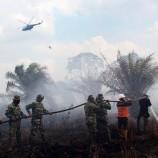 Kebakaran Lahan Gambut Belum Bisa Dikendalikan