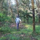 Lahan 330.000 Hektar Disiapkan