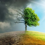 Pakar: Indonesia Berperan Besar Dalam Upaya Mitigasi Perubahan Iklim