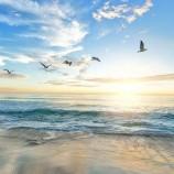 Hari Meteorologi Sedunia: Maksimalkan Potensi Air untuk Hasilkan Energi Terbarukan yang Rendah Emisi Karbon
